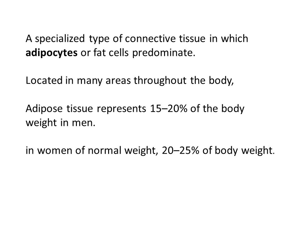 Adipose tissue also functions as an important endocrine organ.