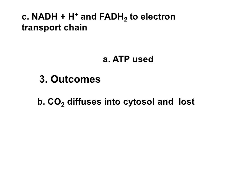 a. ATP used b. CO 2 diffuses into cytosol and lost c. NADH + H+ H+ and FADH 2 to electron transport chain 3. Outcomes