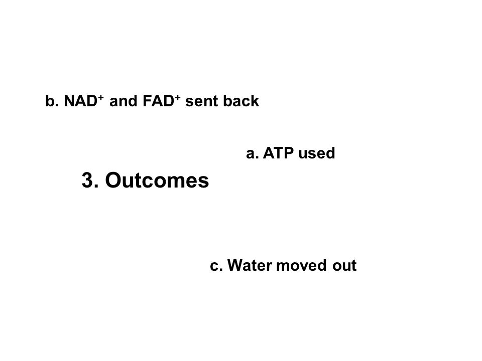 a. ATP used b. NAD + and FAD + sent back c. Water moved out 3. Outcomes