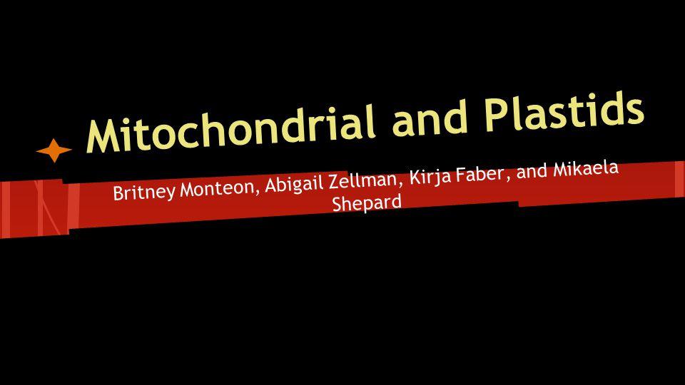 Mitochondrial and Plastids Britney Monteon, Abigail Zellman, Kirja Faber, and Mikaela Shepard