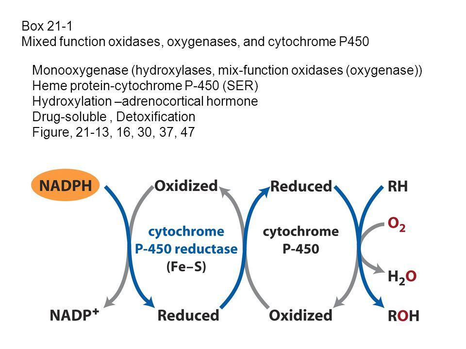 Box 21-1 Mixed function oxidases, oxygenases, and cytochrome P450 Monooxygenase (hydroxylases, mix-function oxidases (oxygenase)) Heme protein-cytochr