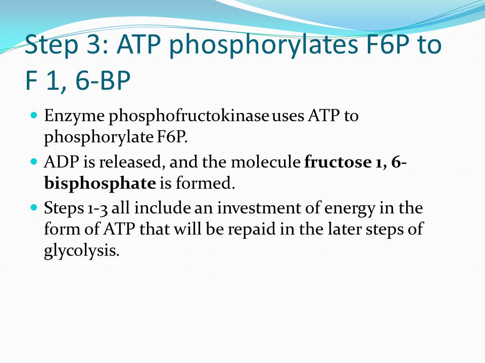 Step 3: ATP phosphorylates F6P to F 1, 6-BP Enzyme phosphofructokinase uses ATP to phosphorylate F6P.