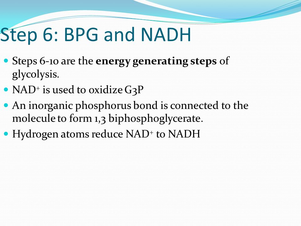 Step 6: BPG and NADH Steps 6-10 are the energy generating steps of glycolysis.