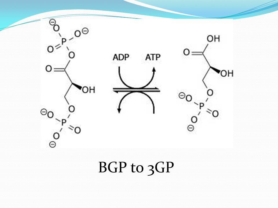BGP to 3GP
