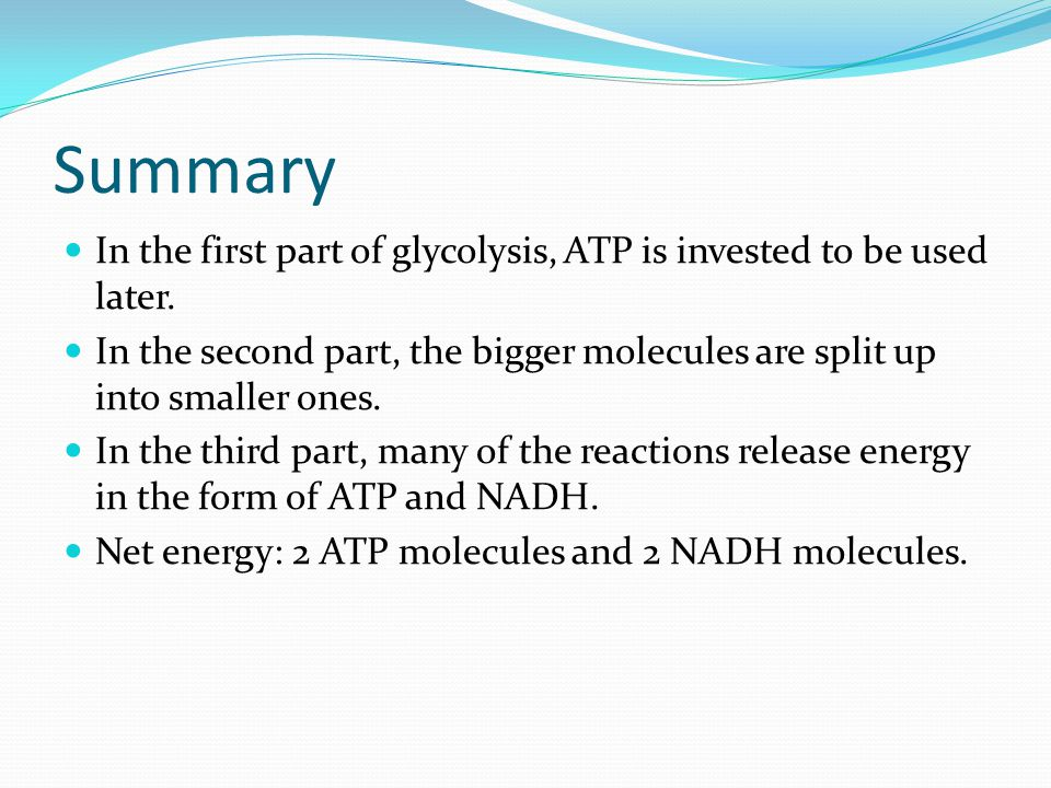 Summary In the first part of glycolysis, ATP is invested to be used later.