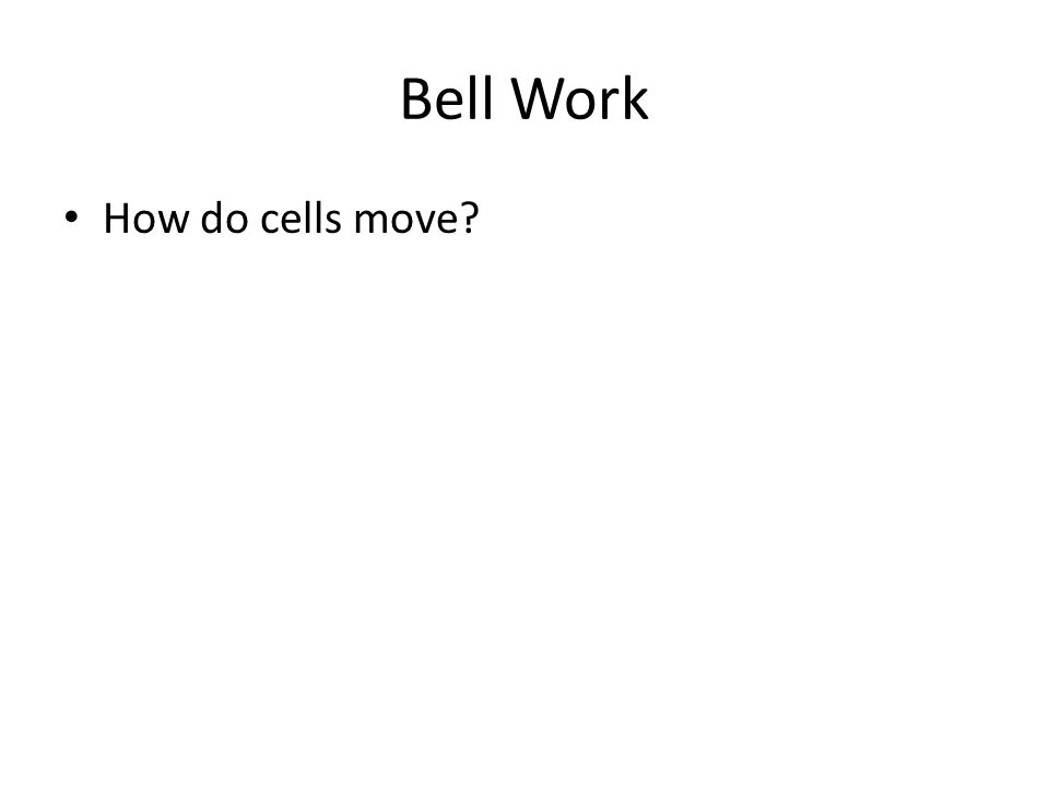 Bell Work How do cells move