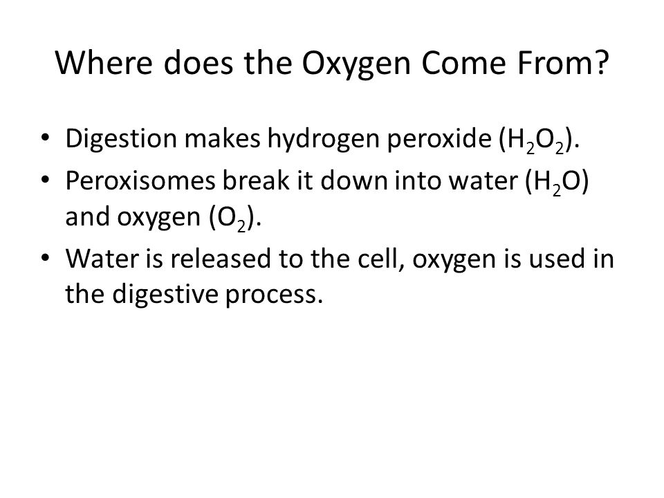 Where does the Oxygen Come From. Digestion makes hydrogen peroxide (H 2 O 2 ).