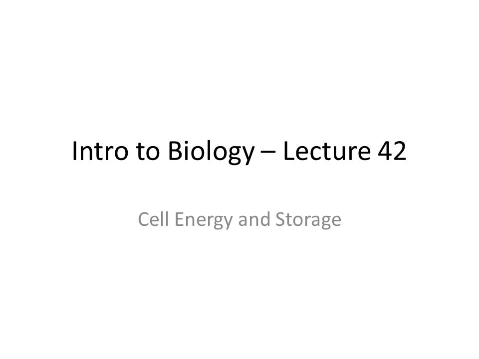 Intro to Biology – Lecture 42 Cell Energy and Storage