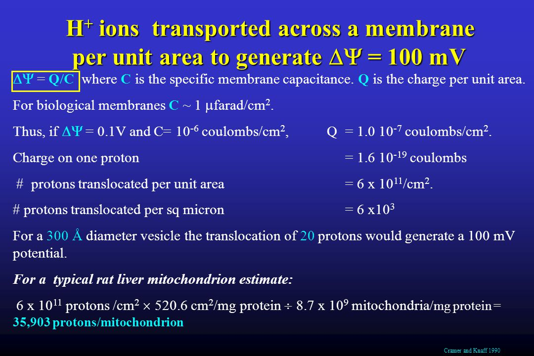 H + ions transported across a membrane per unit area to generate  = 100 mV  = Q/C where C is the specific membrane capacitance.