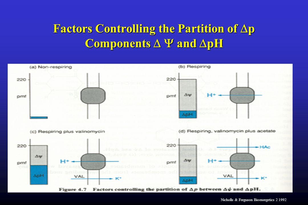 Factors Controlling the Partition of  p Components   and  pH Nicholls & Ferguson Bioenergetics 2 1992