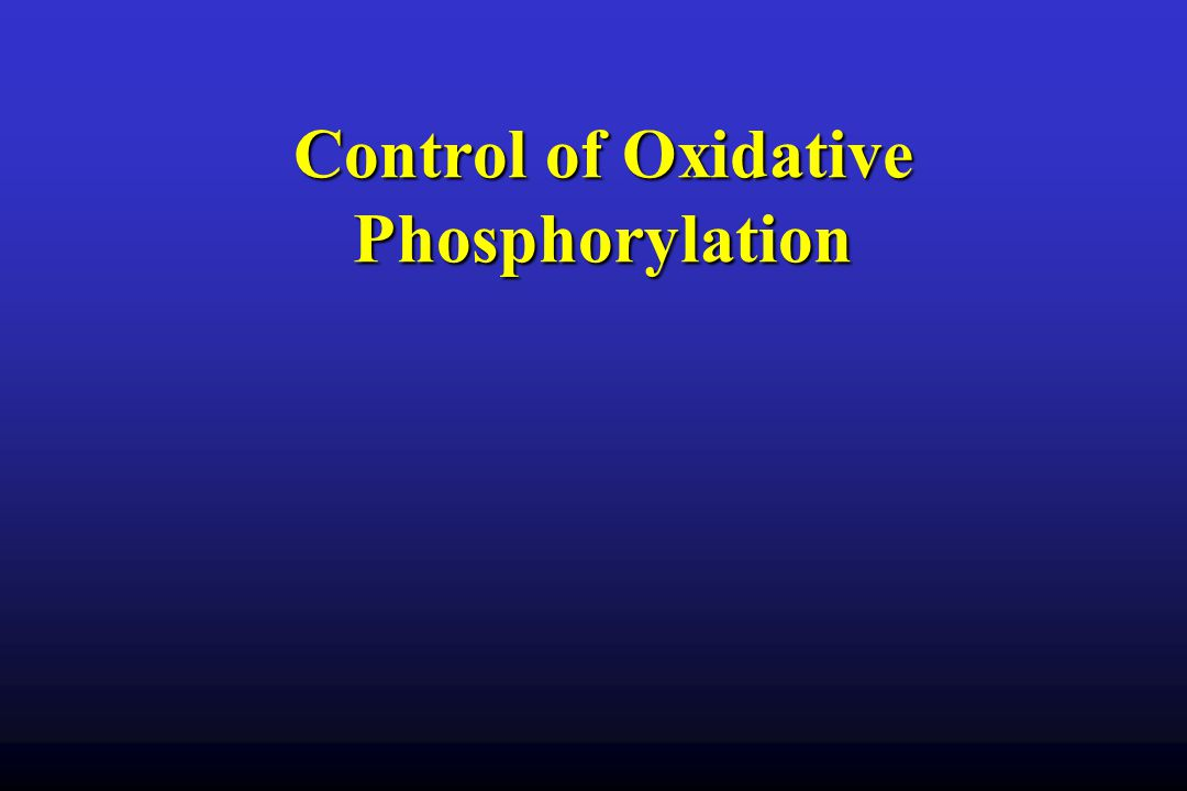 Control of Oxidative Phosphorylation