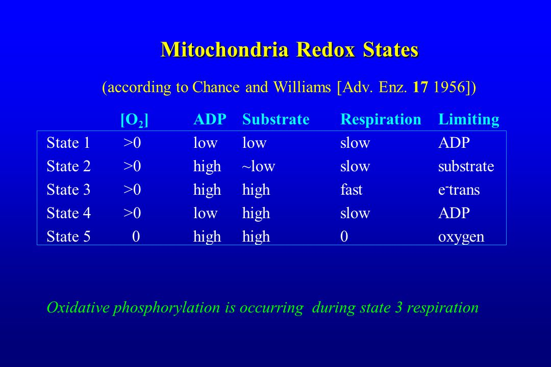 MitochondriaRedoxStates Mitochondria Redox States (according to Chance and Williams [Adv.