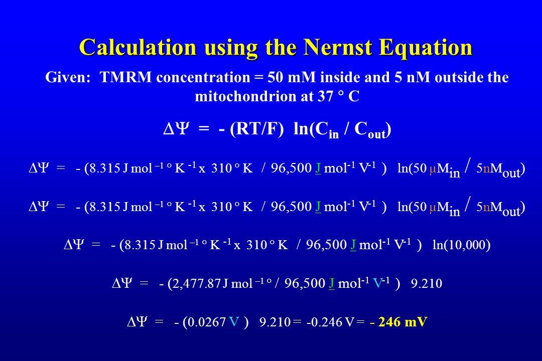 Calculation using the Nernst Equation Given: TMRM concentration = 50 mM inside and 5 nM outside the mitochondrion at 37  C  = - (RT/F) ln(C in / C out )  = - ( 8.315 J mol –1  K -1 x 310  K / 96,500 J mol -1 V -1 ) ln(50 µM in / 5nM out )  = - ( 8.315 J mol –1  K -1 x 310  K / 96,500 J mol -1 V -1 ) ln(10,000 )  = - ( 2,477.87 J mol –1  / 96,500 J mol -1 V -1 ) 9.210  = - ( 0.0267 V ) 9.210 = -0.246 V = - 246 mV
