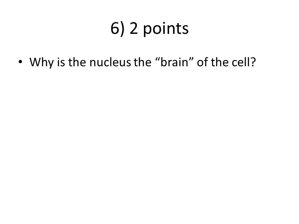"""6) 2 points Why is the nucleus the """"brain"""" of the cell?"""