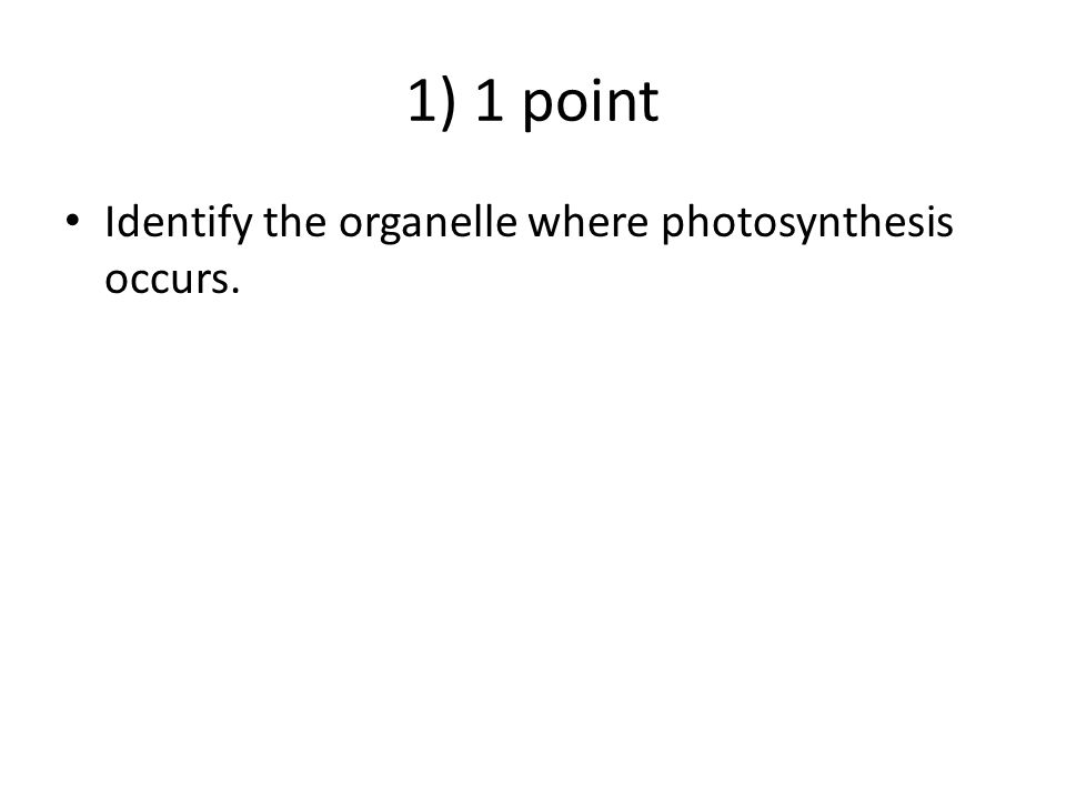 1) 1 point Identify the organelle where photosynthesis occurs. ANSWER - CHLOROPLAST