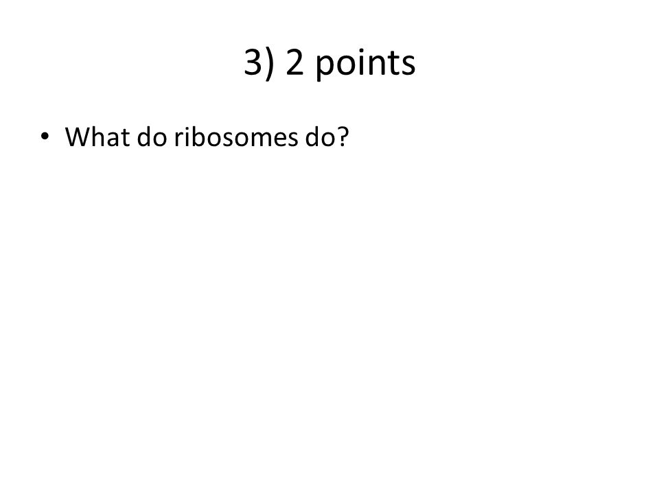3) 2 points What do ribosomes do? ANSWER – Ribosomes make proteins