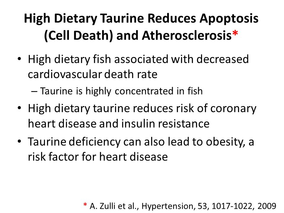 High Dietary Taurine Reduces Apoptosis and Atherosclerosis: Experiment* Rabbits fed high cholesterol diet Examined effect of taurine supplements on left main coronary artery Results – Reduced serum homocysteine levels – Endoplasmic Reticulum stress reduced in endothelial cells which protected them from apoptosis – Reduced atherosclerosis in artery wall – Reduced serum HDL * A.