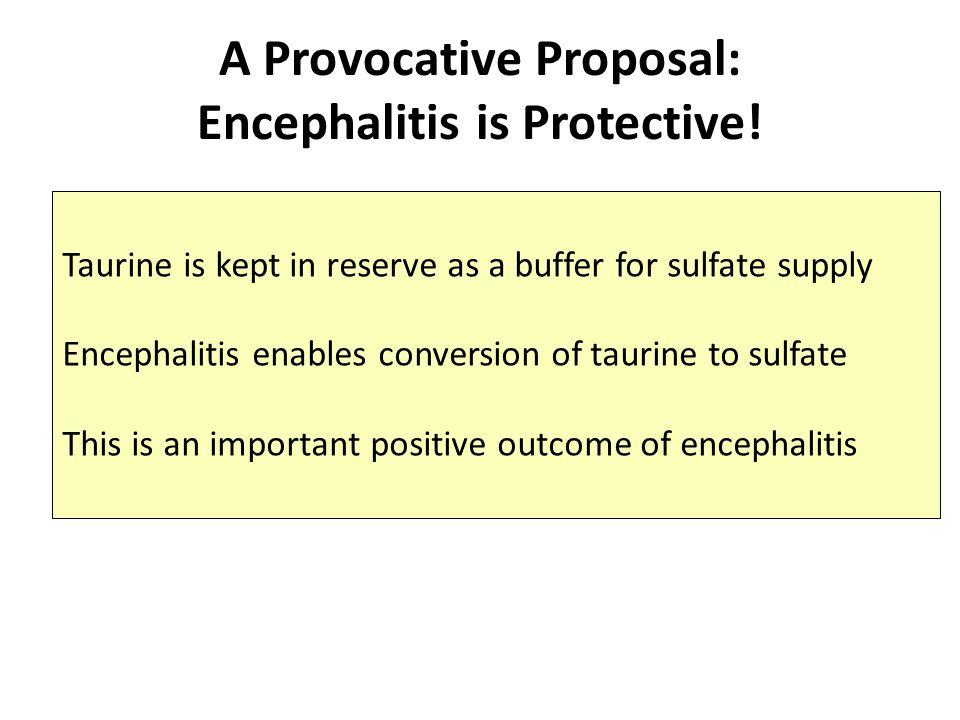 What is Encephalitis.