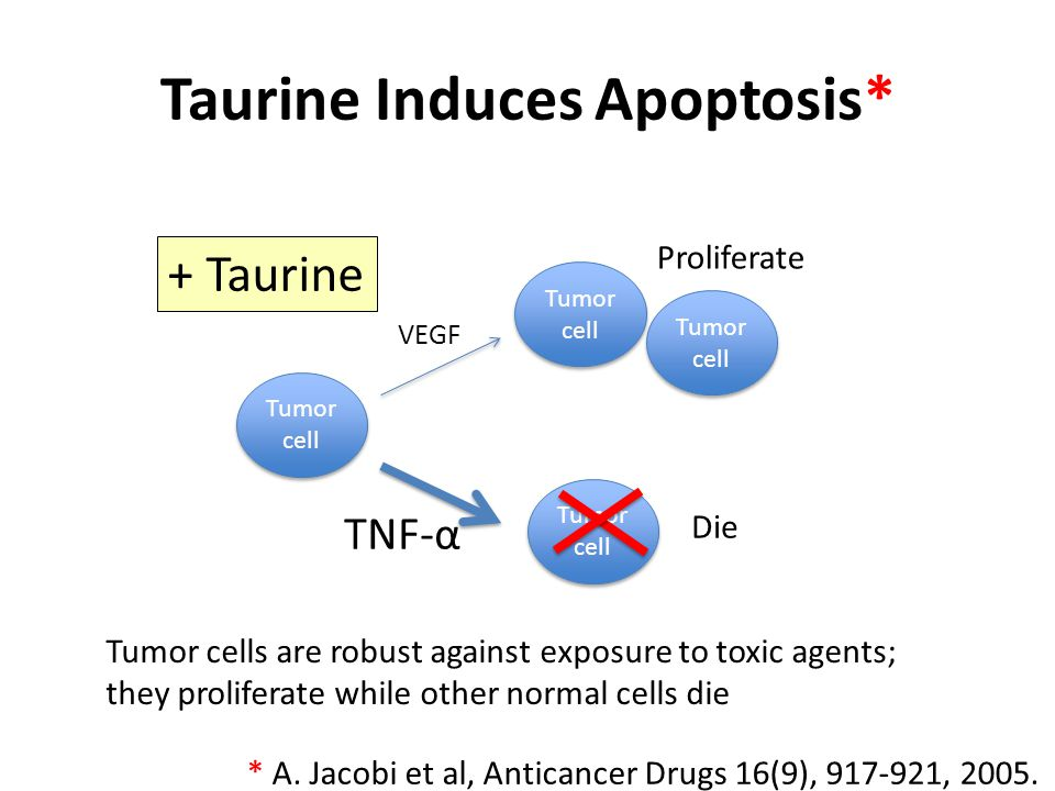 Low Serum Taurine and Cancer Many different cancers have been found to be associated with unusually low serum taurine levels – Breast cancer – Ovarian cancer – Bladder cancer – Lung cancer – Uterine cancer – Liver cancer – Colon cancer – Gastro-intestinal cancer – Endometrial cancer Hypothesis: cancer depletes taurine by converting it to sulfate Tumor cells typically overproduce sulfated polysaccharides