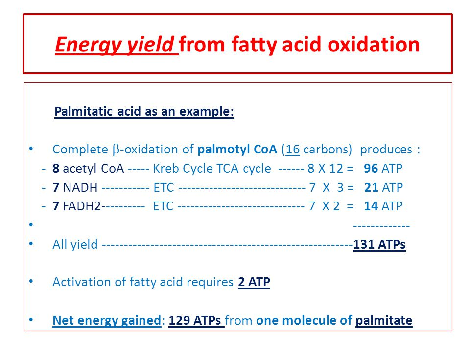 Energy yield from fatty acid oxidation Palmitatic acid as an example: Complete  -oxidation of palmotyl CoA (16 carbons) produces : - 8 acetyl CoA ----- Kreb Cycle TCA cycle ------ 8 X 12 = 96 ATP - 7 NADH ----------- ETC ----------------------------- 7 X 3 = 21 ATP - 7 FADH2---------- ETC ----------------------------- 7 X 2 = 14 ATP ------------- All yield ---------------------------------------------------------131 ATPs Activation of fatty acid requires 2 ATP Net energy gained: 129 ATPs from one molecule of palmitate