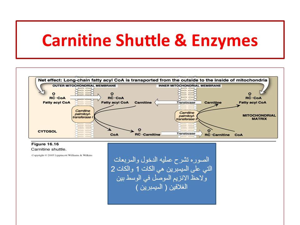 Carnitine Shuttle & Enzymes الصوره تشرح عمليه الدخول والمربعات التي على الميمبرين هي الكات 1 والكات 2 ولاحظ الانزيم الموصل في الوسط بين الغلافين ( الميمبرين )