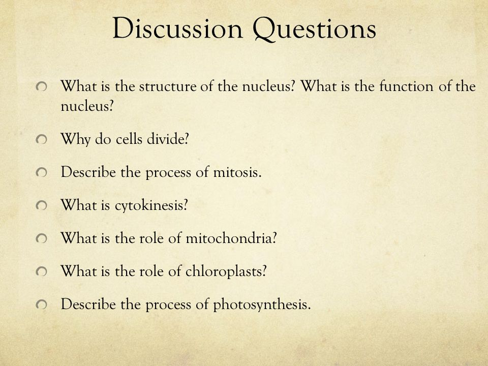 Discussion Questions What is the structure of the nucleus? What is the function of the nucleus? Why do cells divide? Describe the process of mitosis.