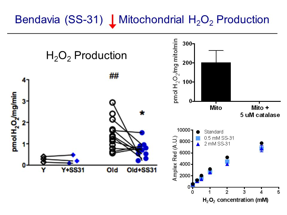 H 2 O 2 Production Bendavia (SS-31) Mitochondrial H 2 O 2 Production