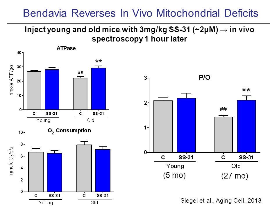 Bendavia Reverses In Vivo Mitochondrial Deficits Siegel et al., Aging Cell.