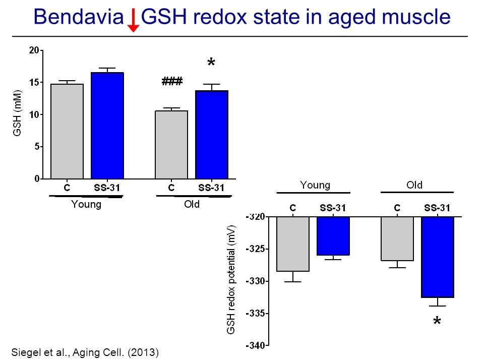 Siegel et al., Aging Cell. (2013) Bendavia GSH redox state in aged muscle