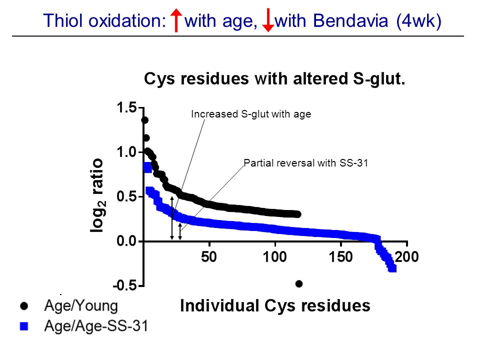 Thiol oxidation: with age, with Bendavia (4wk) Increased S-glut with age Partial reversal with SS-31