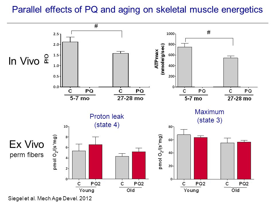 Parallel effects of PQ and aging on skeletal muscle energetics # * * # * In Vivo Maximum (state 3) Proton leak (state 4) Ex Vivo perm fibers Siegel et al.