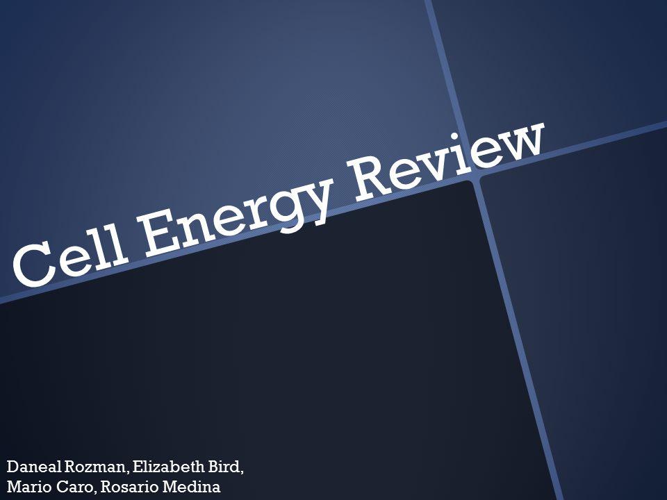 Cell Energy Review Daneal Rozman, Elizabeth Bird, Mario Caro, Rosario Medina