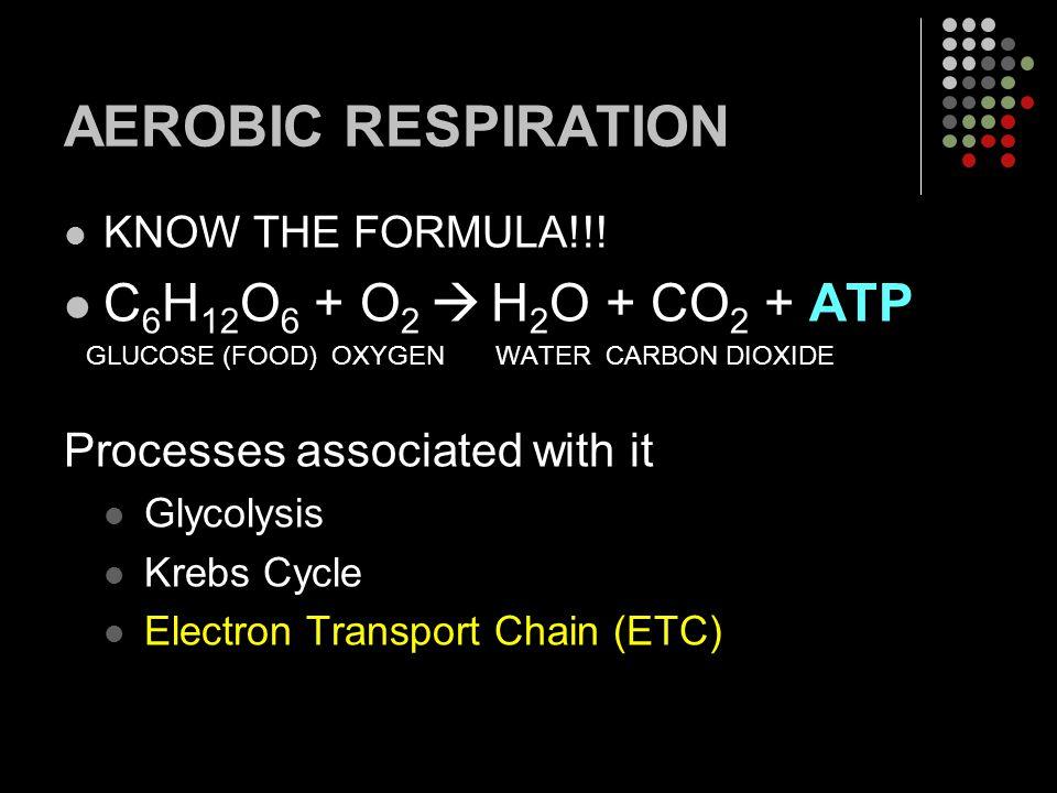 AEROBIC RESPIRATION KNOW THE FORMULA!!! C 6 H 12 O 6 + O 2  H 2 O + CO 2 + ATP GLUCOSE (FOOD) OXYGEN WATER CARBON DIOXIDE Processes associated with i