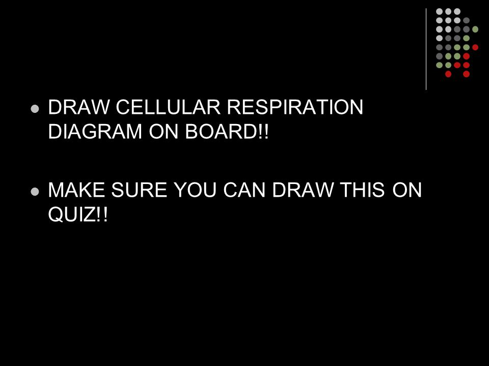 DRAW CELLULAR RESPIRATION DIAGRAM ON BOARD!! MAKE SURE YOU CAN DRAW THIS ON QUIZ!!