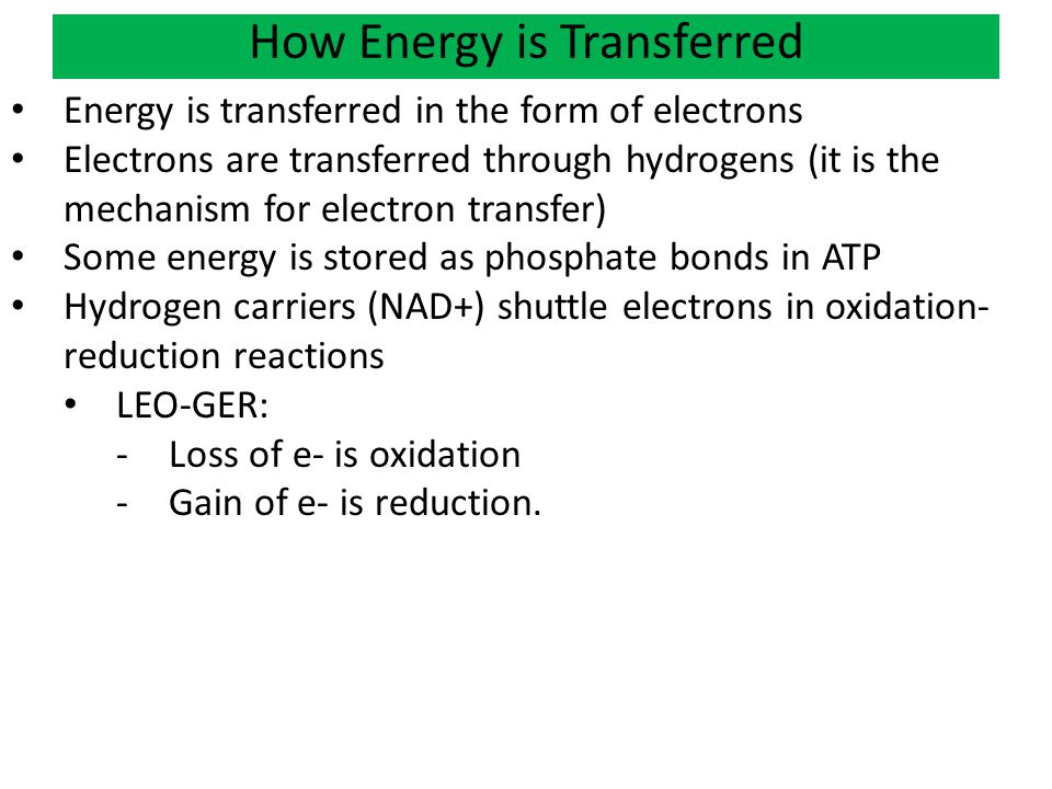 How Energy is Transferred Energy is transferred in the form of electrons Electrons are transferred through hydrogens (it is the mechanism for electron transfer) Some energy is stored as phosphate bonds in ATP Hydrogen carriers (NAD+) shuttle electrons in oxidation- reduction reactions LEO-GER: -Loss of e- is oxidation -Gain of e- is reduction.