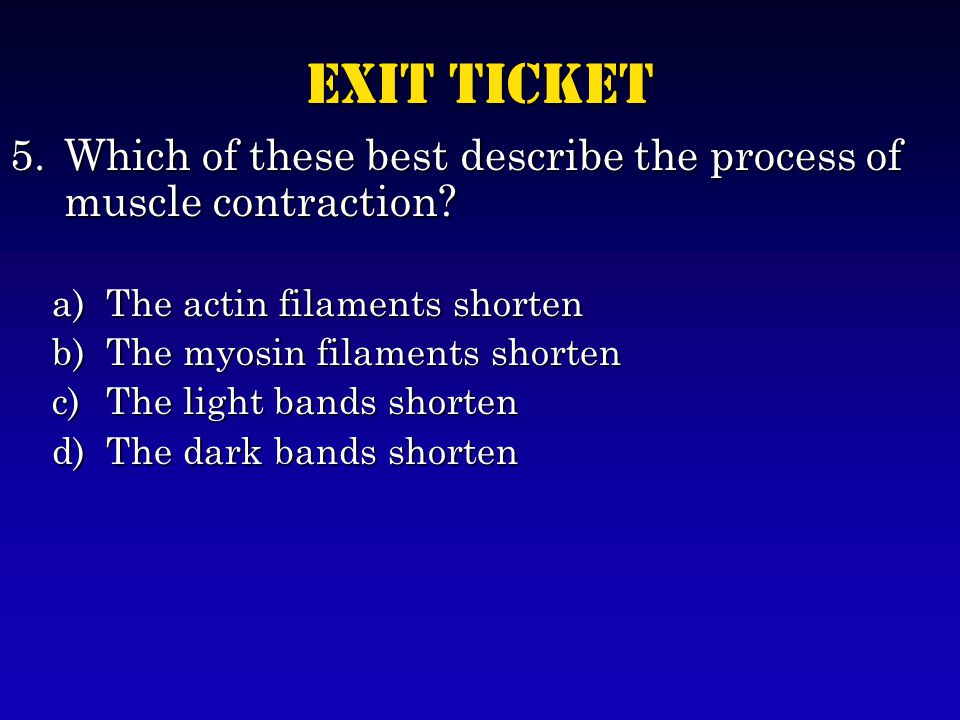 Exit Ticket 5.Which of these best describe the process of muscle contraction.