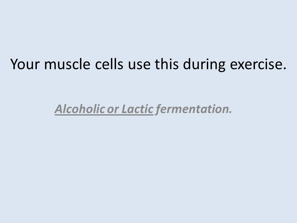 Your muscle cells use this during exercise. Alcoholic or Lactic fermentation.