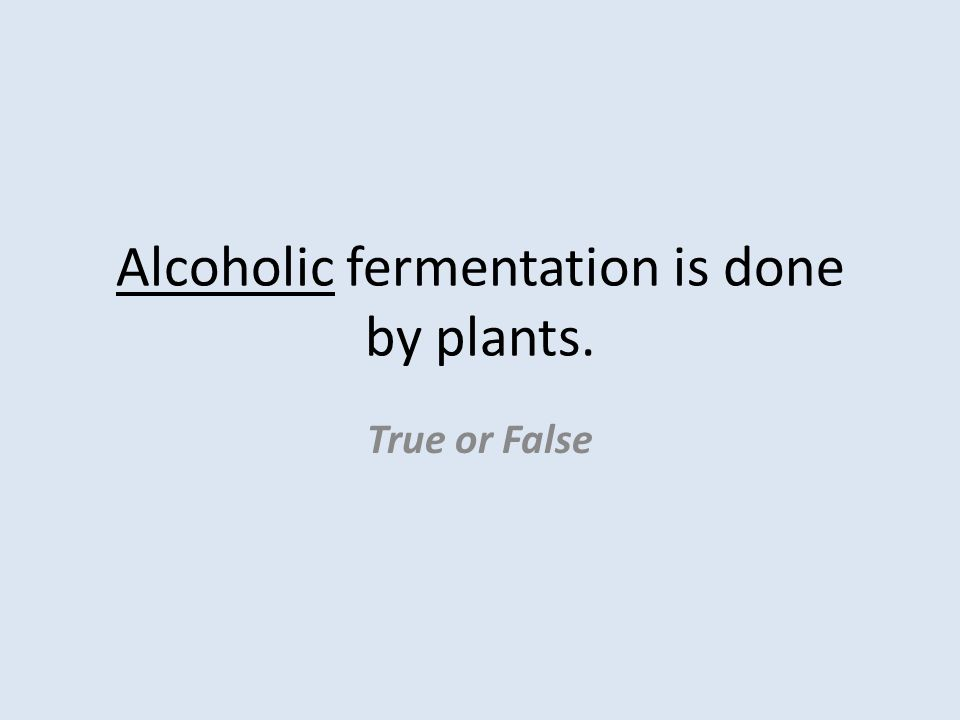 Alcoholic fermentation is done by plants. True or False