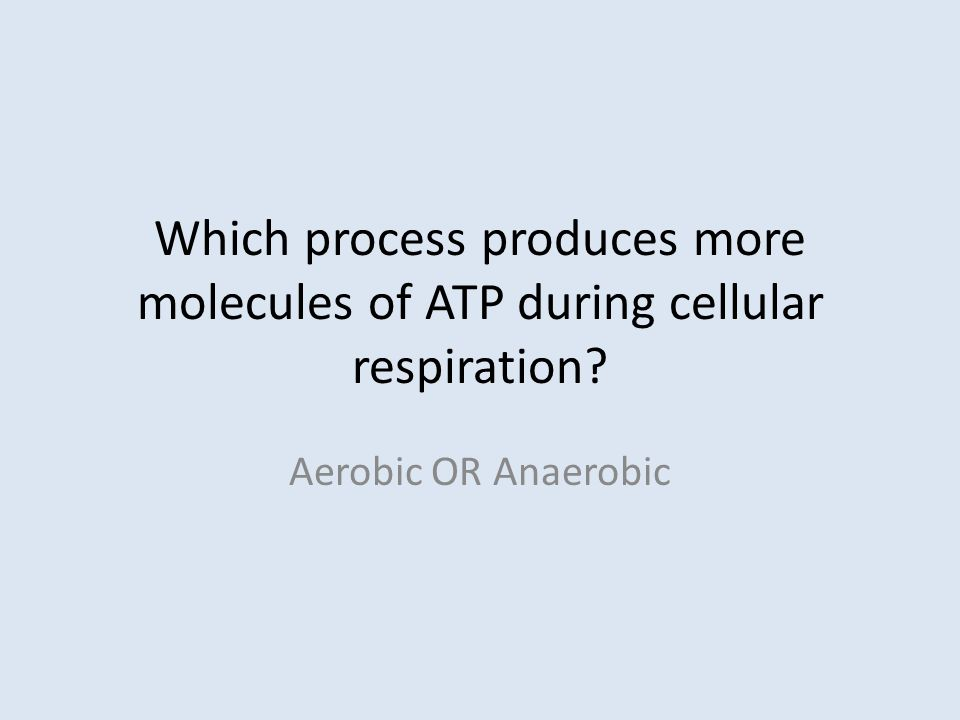 Which process produces more molecules of ATP during cellular respiration Aerobic OR Anaerobic