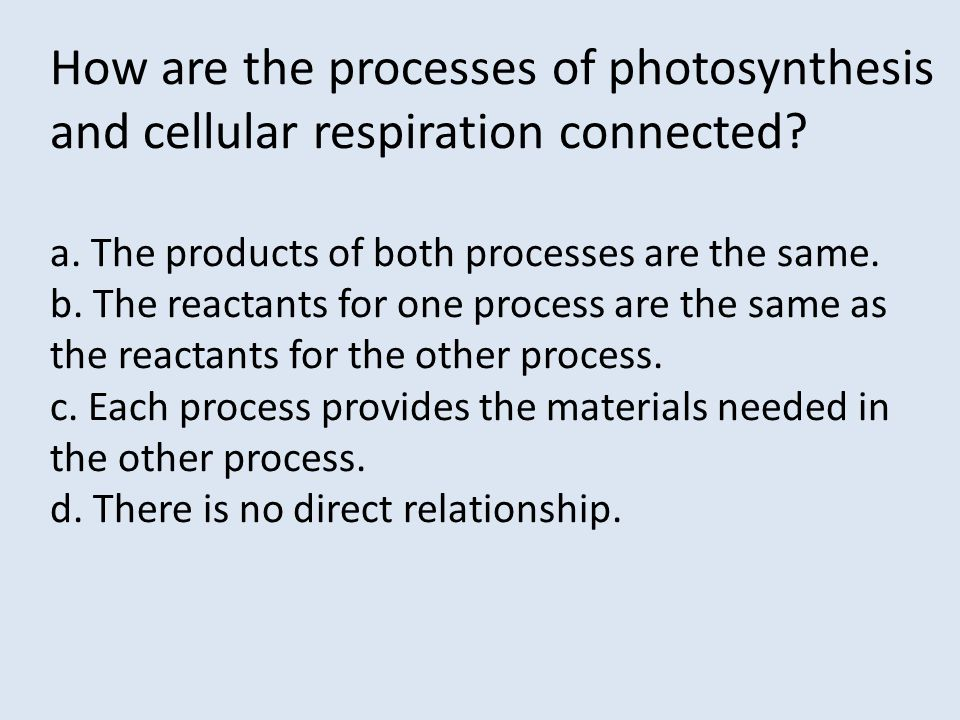 How are the processes of photosynthesis and cellular respiration connected? a. The products of both processes are the same. b. The reactants for one p