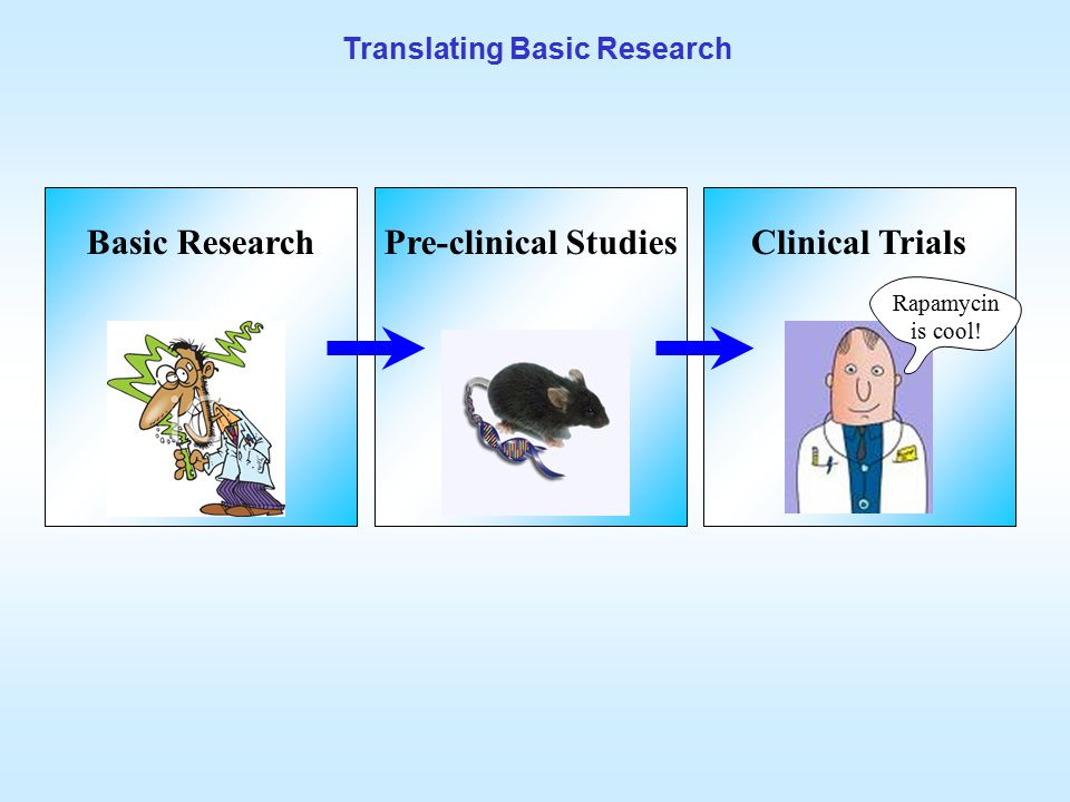 Translating Basic Research Basic ResearchPre-clinical StudiesClinical Trials Rapamycin is cool!