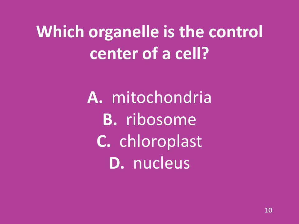 Which organelle is the control center of a cell.A.