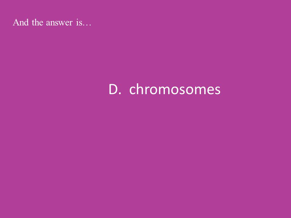 D. chromosomes And the answer is…