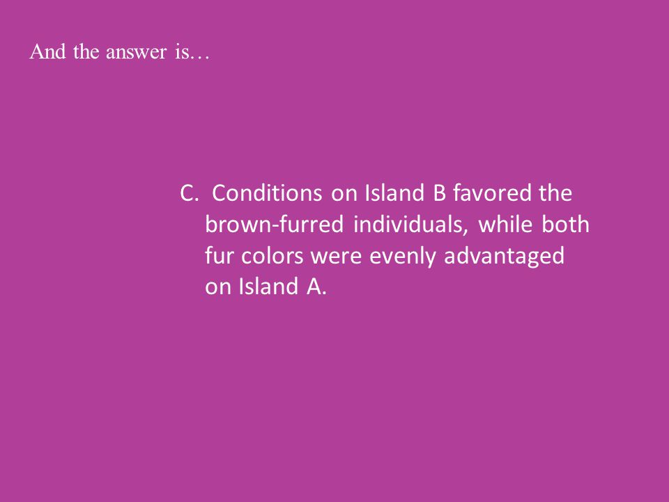 C. Conditions on Island B favored the brown-furred individuals, while both fur colors were evenly advantaged on Island A. And the answer is…