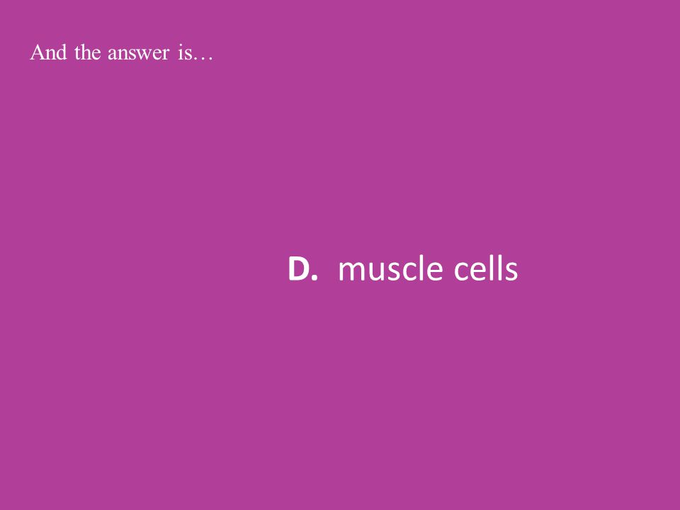 D. muscle cells And the answer is…