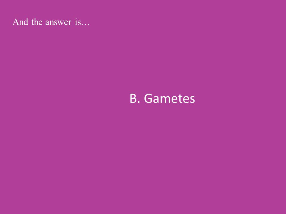 B. Gametes And the answer is…