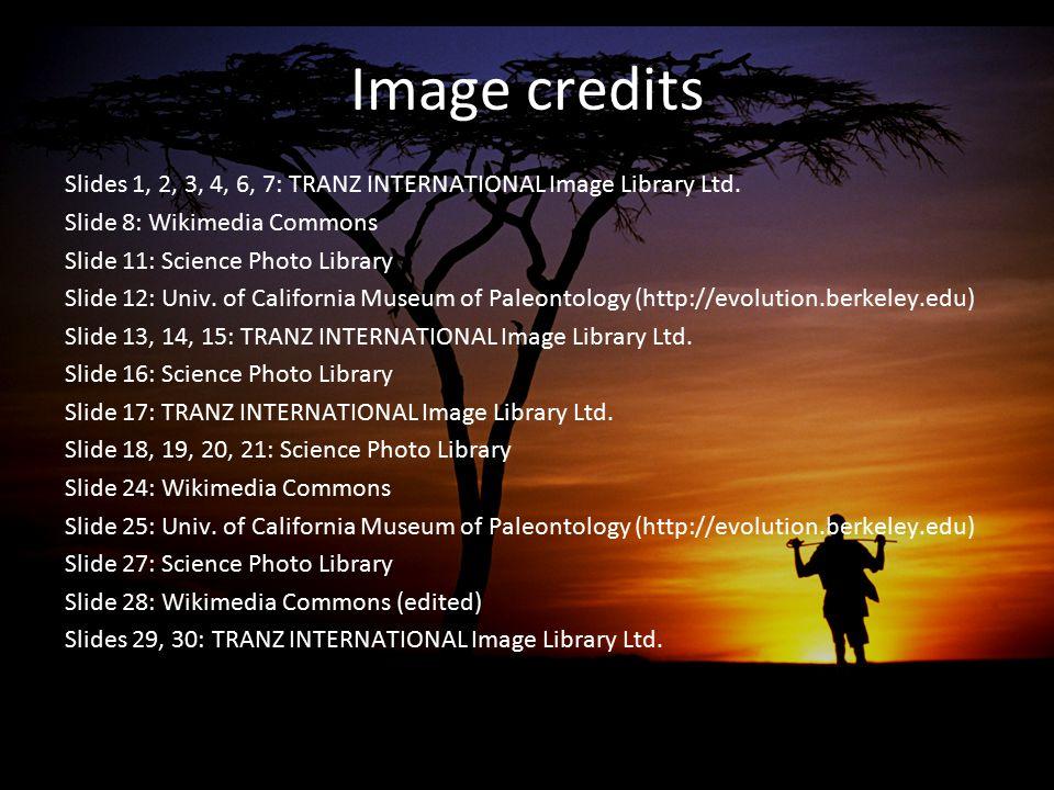 Image credits Slides 1, 2, 3, 4, 6, 7: TRANZ INTERNATIONAL Image Library Ltd. Slide 8: Wikimedia Commons Slide 11: Science Photo Library Slide 12: Uni