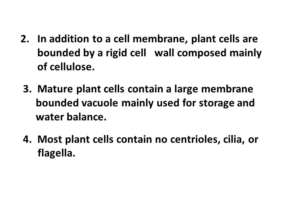 2.In addition to a cell membrane, plant cells are bounded by a rigid cell wall composed mainly of cellulose.