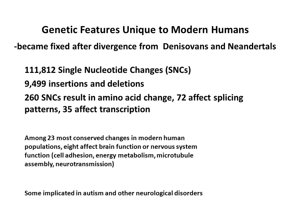 Genetic Features Unique to Modern Humans -became fixed after divergence from Denisovans and Neandertals 111,812 Single Nucleotide Changes (SNCs) 9,499