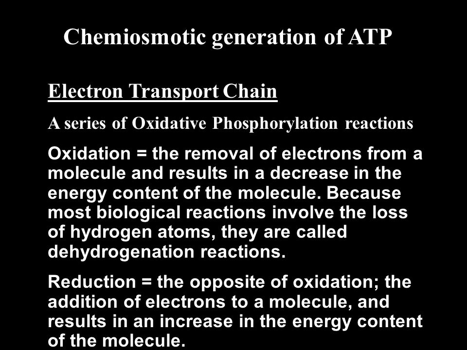 Electron Transport Chain A series of Oxidative Phosphorylation reactions Oxidation = the removal of electrons from a molecule and results in a decrease in the energy content of the molecule.